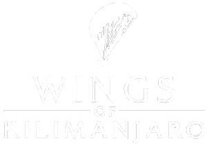 logo--wings-of-kilimanjaro